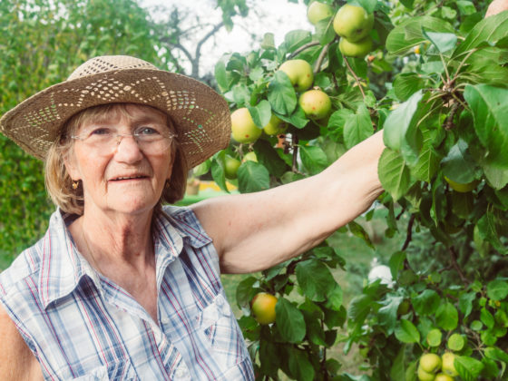 Photo of an older woman next to a tree loaded with apples