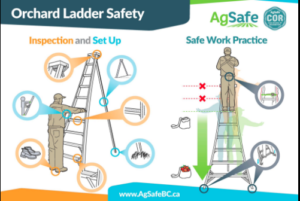 Poster from AgSafeBC