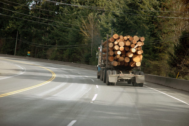 Photo of the back of a loaded logging truck on a highway