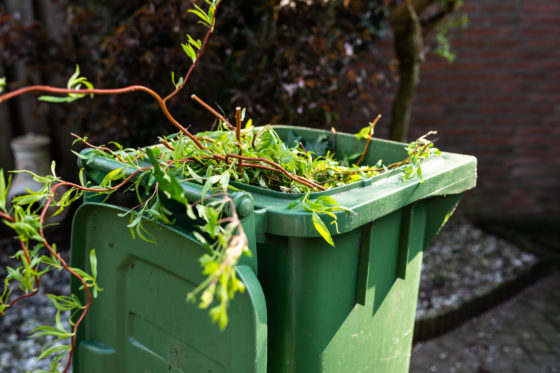 Photo of a green bin filled with garden trimmings