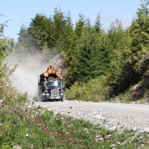 Photo of a loaded logging truck driving on a resource road.